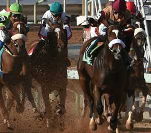 Saudi Arabia to host world's richest horse race
