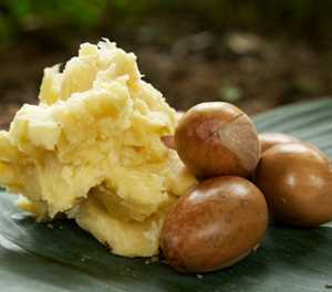 Nigerian farmers hope to spread shea butter wealth