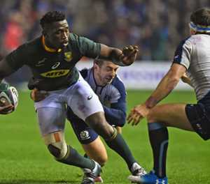 Erasmus defends Springboks captain Kolisi after Scotland incident