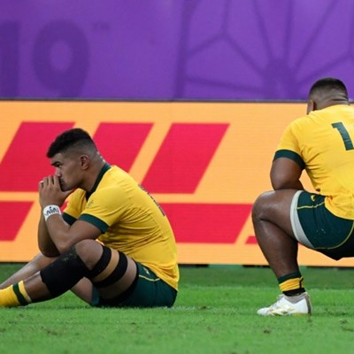 Ex-cricket chief on panel to review Wallabies World Cup flop