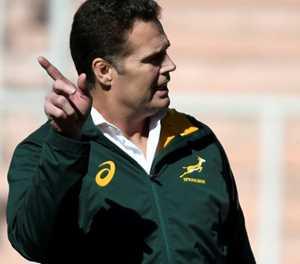 Boks coach says job on the line against All Blacks