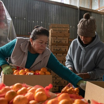 Essential but exposed: US farm laborers lack virus protection