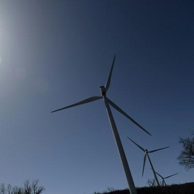 Renewable energy powers ahead in 2020: report