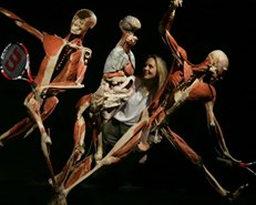 Russia probes art exhibition of preserved corpses