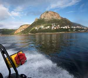 SA divers risk all to poach marine delicacies for China diners