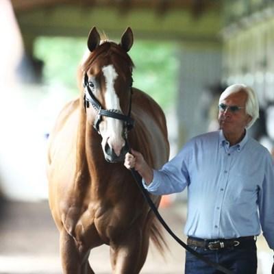 Racehorse trainer Baffert denies doping Triple Crown king Justify