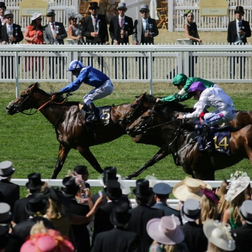 Humour at a premium for Hannon as Royal Ascot looms