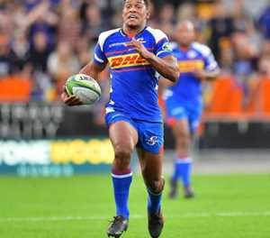 South Africa call up uncapped Stormers fly-half Willemse