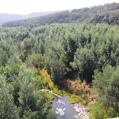 Langkloof's Krom River in serious ecological danger