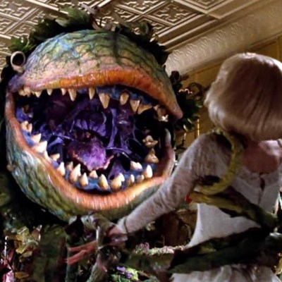 Enjoy 'Little Shop of Horrors' on stage