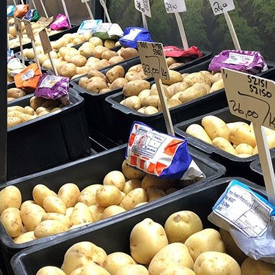 Oversupply crisis a hard blow for global potato farmers