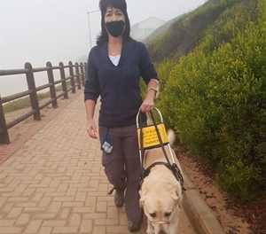 Siggestremde en hond deel van landwye veldtog