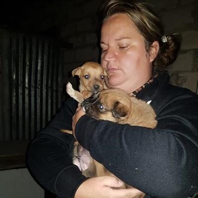 Man still in custody for 'skinning' dog