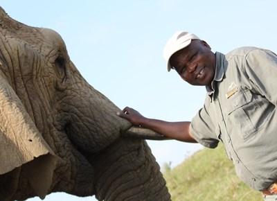 Knysna Elephant Park turns 25