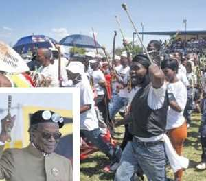 IFP looks to expand in Gauteng