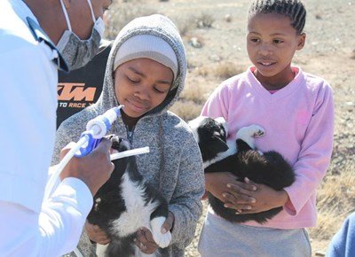 SPCA reaches out to Aberdeen