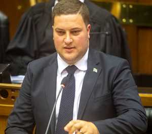 DA MP wants to attend next ANC NEC meeting