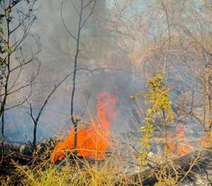 Fire season over, controlled burns again allowed