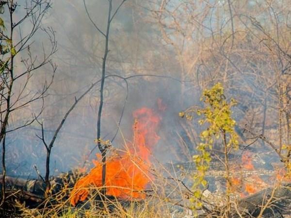 Fire season over, controlled burns again allowed