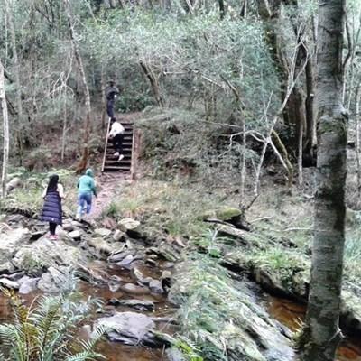 Tourists mugged on hiking trail