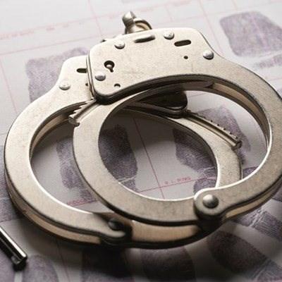 Police make major drug bust on Limpopo farm