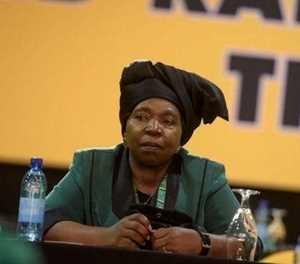 "Steenhuisen: ""Dlamini-Zuma should be fired for lying"""