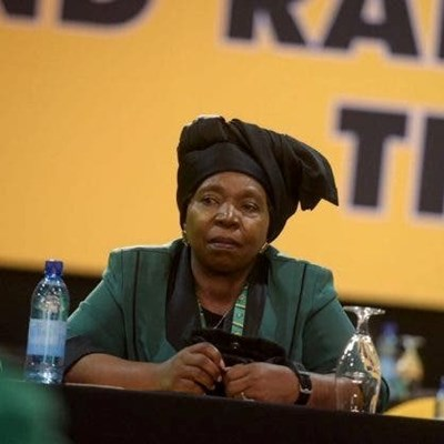 "Steenhuisen: ""Dlamini-Zuma should be fired for lying"""