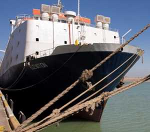 Concern as livestock vessels stuck in Suez Canal queue