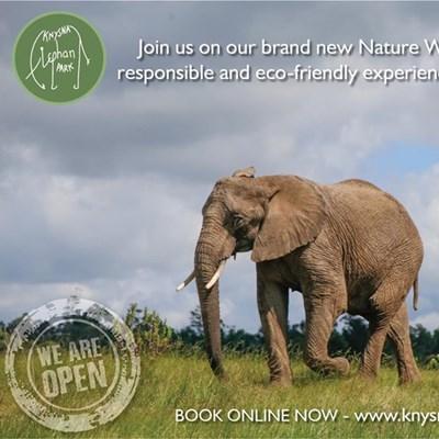 Enjoy a breath of fresh air on a walk in the Knysna Elephant Park