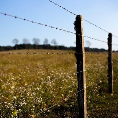 Communal land plays no part in land redistribution