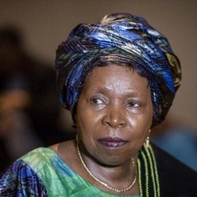 Medical research supports tobacco ban decision, says Dlamini-Zuma