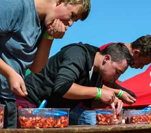 Strawberry Festival: Sweet and sticky fun for festival goers