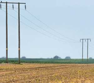 Agri sector highlights negative consequences of load-shedding