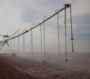 Didiza commissions Ebenhaezer Irrigation Scheme