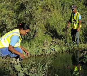 Seweweekspoort Pass plants rehabilitated