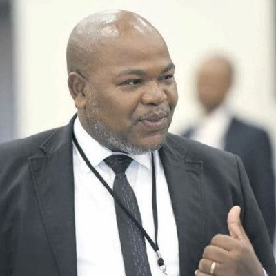 Zondo postpones testimony of Hawks officer implicated in plot to oust Nxasana