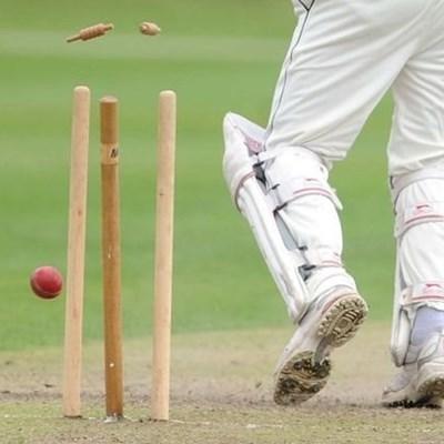 Zander a shining star in school's cricket