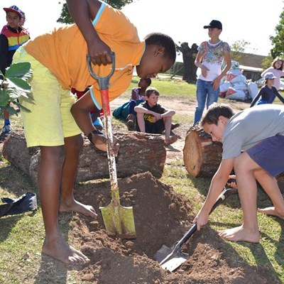 Hoekwil Primary helps reforest the Garden Route