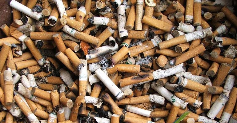 SA first country in world with illegal cigarette brand as
