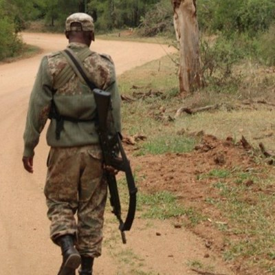 Four poachers arrested and one fatally wounded as Kruger enters June