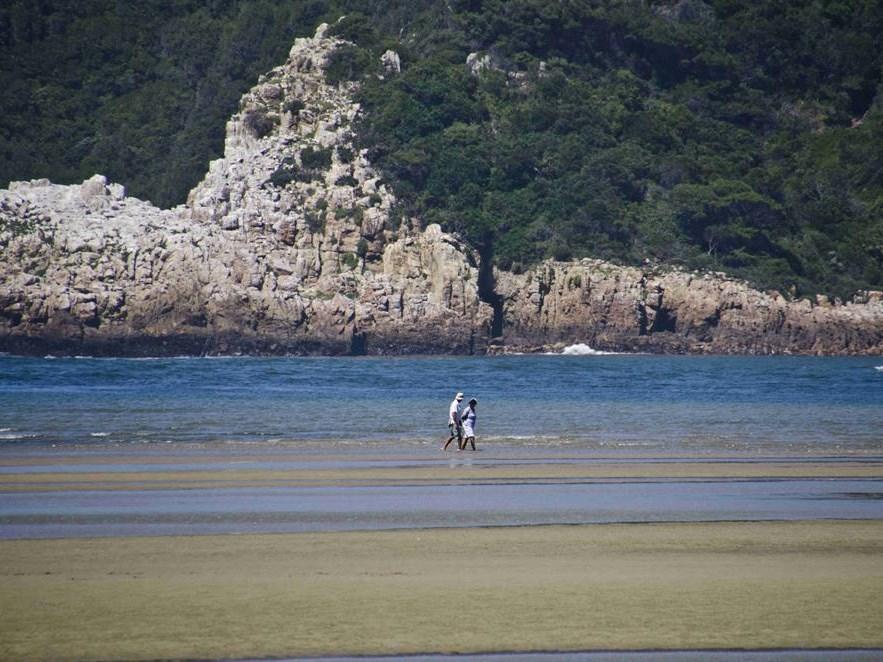 'Unspecific' readings mar better estuary figures