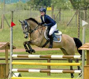 Unicorns steal the show at Olympia Estate's riding event