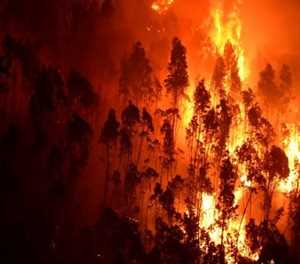 R400 000 fraud in Knysna fires afterburn