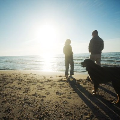 Beaches for dogs in Sedgefield