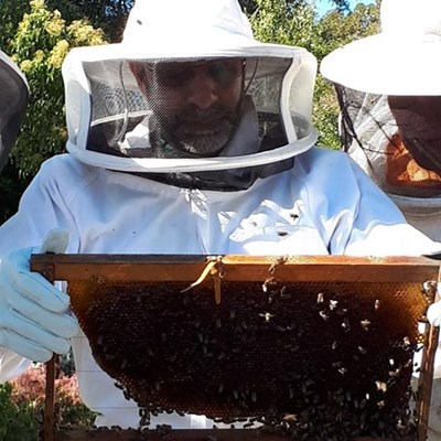 New Hope For Honey centre a hive of activity