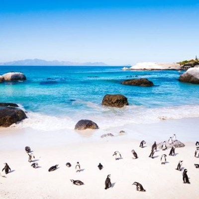 5 most Instagrammable places to visit in Cape Town (after lockdown)