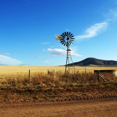 Didiza welcomes GDP numbers for agricultural sector
