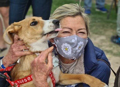 SPCA celebrates 20 years