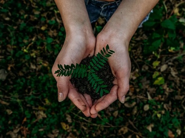 Environmental management plan published for adoption