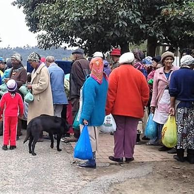 Lali Dwyer, Knysna's Local Angel Feeding The Hungry Animals